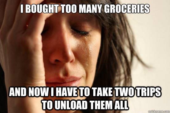 I bought too many groceries and now I have to take two trips to unload them all - I bought too many groceries and now I have to take two trips to unload them all  First World Problems
