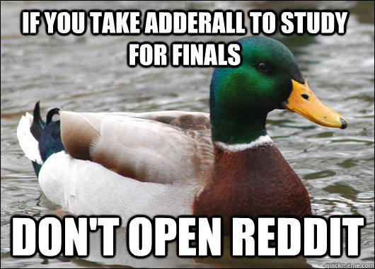 If you take adderall to study for finals Don't open reddit - If you take adderall to study for finals Don't open reddit  Actual Advice Mallard