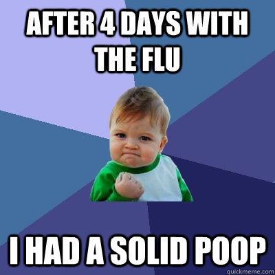 After 4 days with the flu I had a solid poop  Success Kid