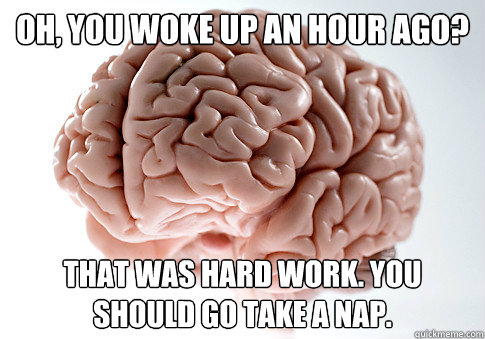 Oh, you woke up an hour ago? That was hard work. You should go take a nap. - Oh, you woke up an hour ago? That was hard work. You should go take a nap.  Scumbag Brain