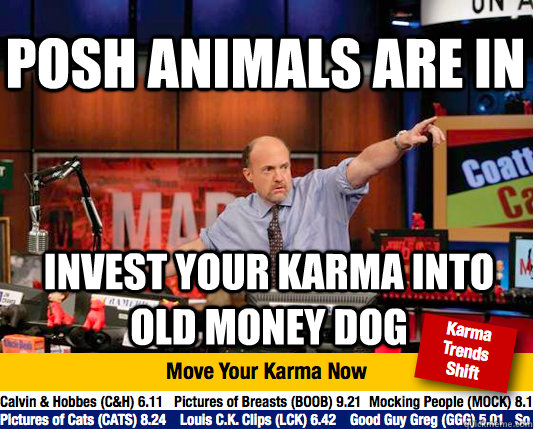 Posh animals are in invest your karma into old money dog - Posh animals are in invest your karma into old money dog  Mad Karma with Jim Cramer