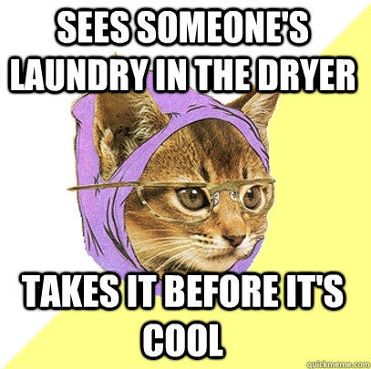 Sees someone's laundry in the dryer Takes it before it's cool  Hipster Kitty