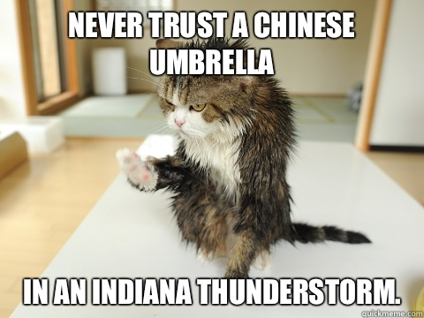d3bba02b07e1adaf2e7e5ebc78dc57734d814b46681457cfed916a5f61f2d6c0 never trust a chinese umbrella in an indiana thunderstorm wet