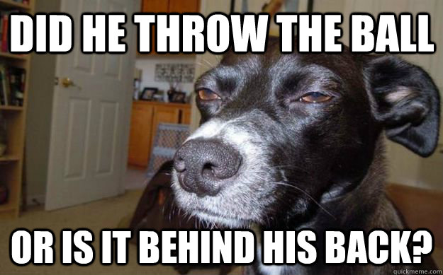 did he throw the ball or is it behind his back? - did he throw the ball or is it behind his back?  Skeptical Mutt