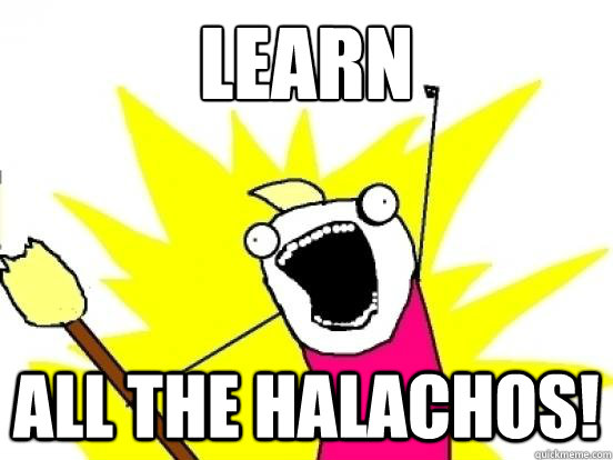 LEARN ALL THE HALACHOS! - LEARN ALL THE HALACHOS!  ALL THE EPISODES