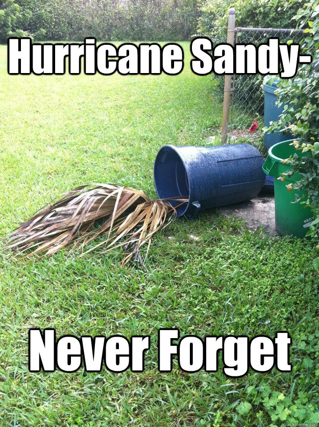 Hurricane Sandy- Never Forget