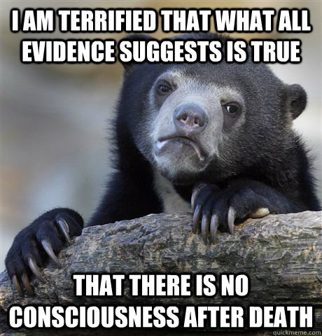 I am terrified that what all evidence suggests is true that there is no consciousness after death - I am terrified that what all evidence suggests is true that there is no consciousness after death  Confession Bear