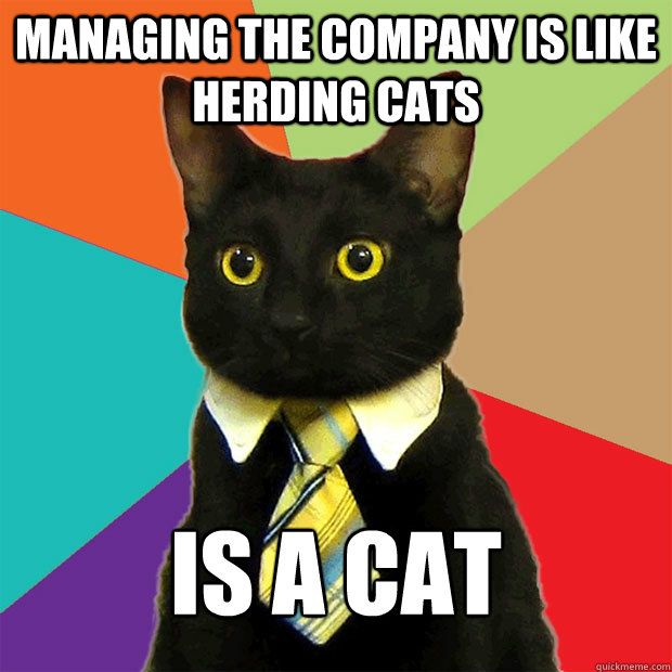 managing the company is like herding cats is a cat - managing the company is like herding cats is a cat  Business Cat