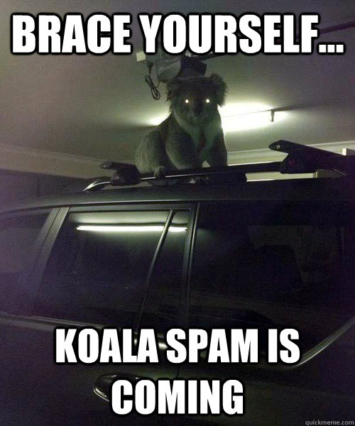 Brace yourself... Koala spam is coming - Brace yourself... Koala spam is coming  Koala