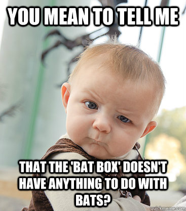 you mean to tell me that the 'bat box' doesn't have anything to do with bats?  - you mean to tell me that the 'bat box' doesn't have anything to do with bats?   skeptical baby