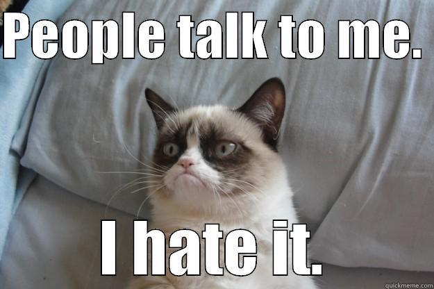 PEOPLE TALK TO ME.  I HATE IT. Grumpy Cat