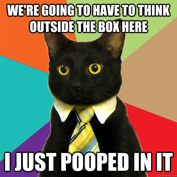 We're going to have to think outside the box here I just pooped in it  Business Cat