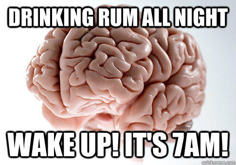 Drinking rum All night wake up! it's 7am! - Drinking rum All night wake up! it's 7am!  Scumbag Brain
