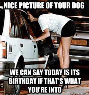 Nice picture of your dog We can say today is its birthday if that's what you're into - Nice picture of your dog We can say today is its birthday if that's what you're into  Karma Whore