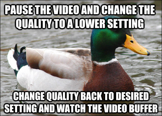 Pause the video and change the quality to a lower setting change quality back to desired setting and watch the video buffer - Pause the video and change the quality to a lower setting change quality back to desired setting and watch the video buffer  Actual Advice Mallard