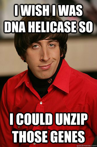 I wish I was DNA Helicase so I could unzip those genes