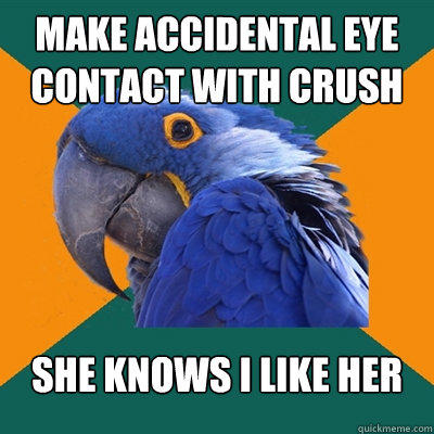 make accidental eye contact with crush she knows i like her - make accidental eye contact with crush she knows i like her  Paranoid Parrot