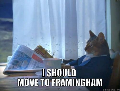 I SHOULD  MOVE TO FRAMINGHAM The One Percent Cat