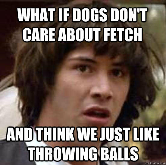 what if dogs don't care about fetch and think we just like throwing balls - what if dogs don't care about fetch and think we just like throwing balls  conspiracy keanu