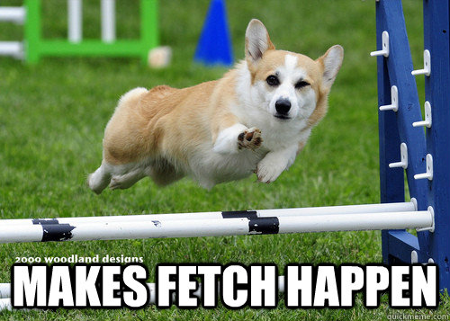 Makes Fetch Happen