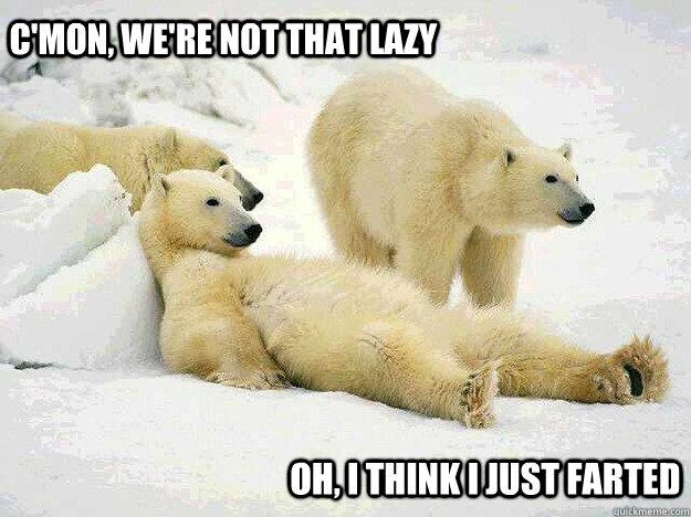 Crazy penguin lazy polar bear