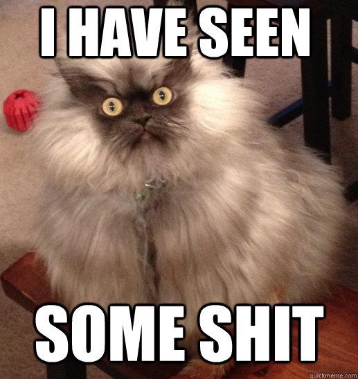 d4ea9bd9f4ec812df84ae4f583aa7c870153880724d61e3096cc968df07eda91 colonel meow memes quickmeme,Meow Meme