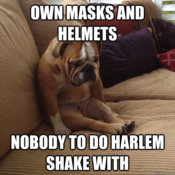 own masks and helmets nobody to do harlem shake with  depressed dog