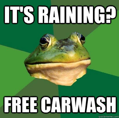 It's raining? Free Carwash - It's raining? Free Carwash  Foul Bachelor Frog