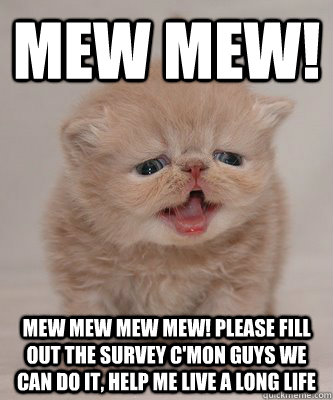 mew mew! mew mew mew mew! please fill out the survey c'mon guys we can do it, help me live a long life - mew mew! mew mew mew mew! please fill out the survey c'mon guys we can do it, help me live a long life  Surveycat