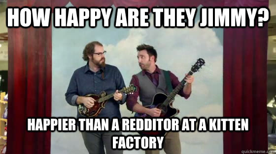 How happy are they Jimmy? Happier than a Redditor at a kitten factory