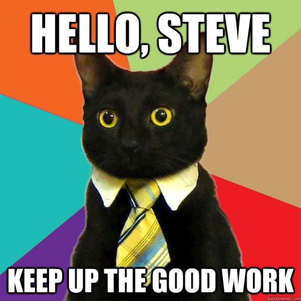 Hello, Steve Keep up the good work - Hello, Steve Keep up the good work  Business Cat