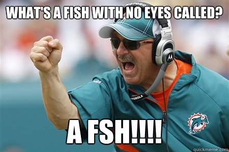 What's a fish with no eyes called? a fsh!!!!