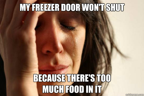 my freezer door won't shut because there's too much food in it - my freezer door won't shut because there's too much food in it  First World Problems