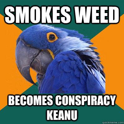 smokes weed  becomes conspiracy keanu - smokes weed  becomes conspiracy keanu  Paranoid Parrot