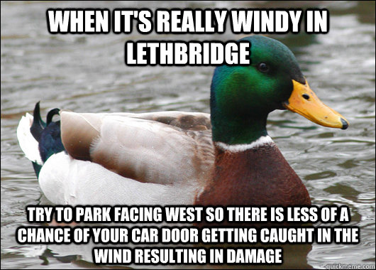 When it's really windy in Lethbridge try to park facing west so there is less of a chance of your car door getting caught in the wind resulting in damage - When it's really windy in Lethbridge try to park facing west so there is less of a chance of your car door getting caught in the wind resulting in damage  Actual Advice Mallard
