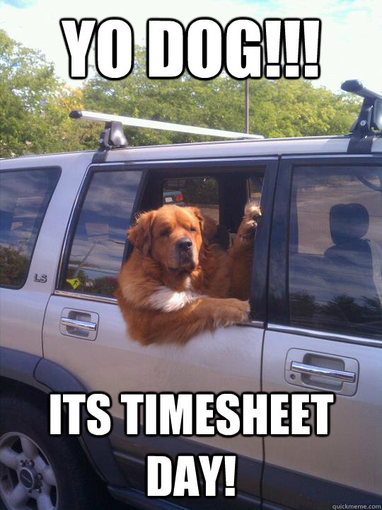 Yo DOg!!! its Timesheet day! - Yo DOg!!! its Timesheet day!  Womans Best Friend Dog