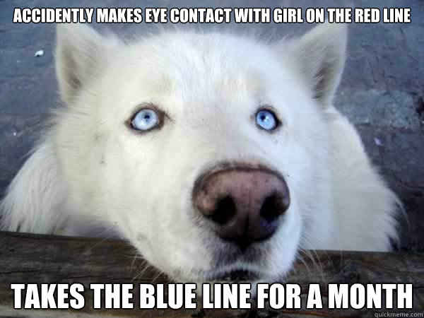 accidently makes eye contact with girl on the red line takes the blue line for a month