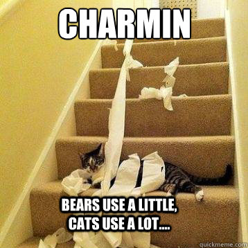 d5c9d74935e5ca060937a0ac1d5cb4b76343884c9cac55d941e406cb52bb40a9 charmin bears use a little, cats use a lot charmin quickmeme