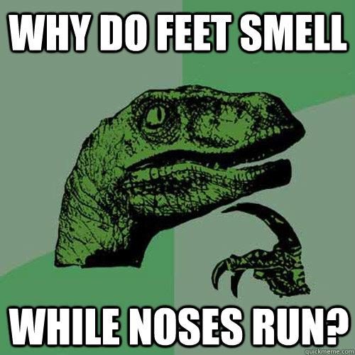 WHY DO FEET Smell while noses run?  Philosoraptor