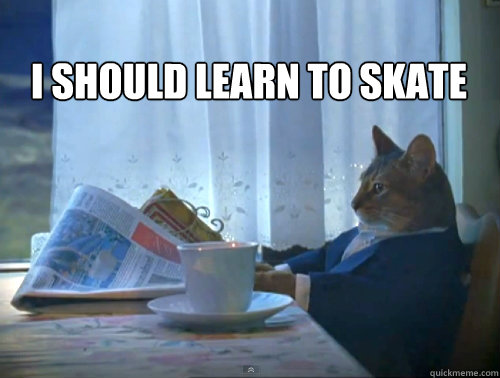 I should learn to skate -  I should learn to skate  The One Percent Cat