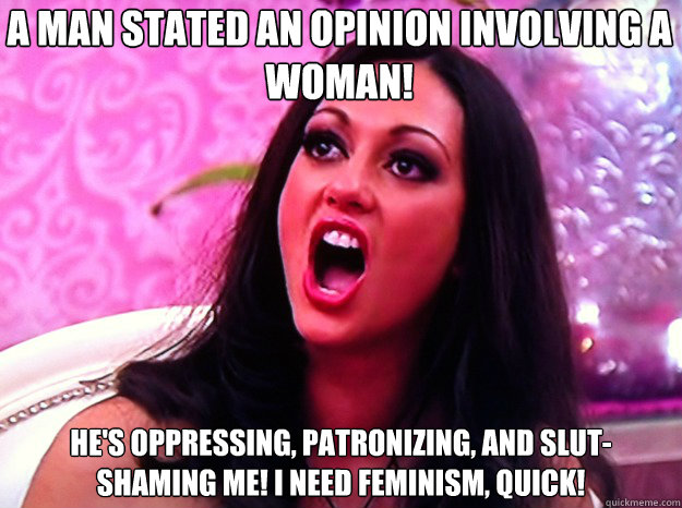 A man stated an opinion involving a woman! He's oppressing, patronizing, and slut-shaming me! I need feminism, quick! - A man stated an opinion involving a woman! He's oppressing, patronizing, and slut-shaming me! I need feminism, quick!  Feminist Nazi