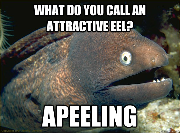 What do you call an attractive eel? Apeeling - What do you call an attractive eel? Apeeling  Bad Joke Eel