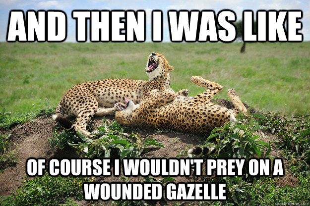 And then I was like Of course i wouldn't prey on a wounded gazelle - And then I was like Of course i wouldn't prey on a wounded gazelle  Laughing Cheetahs