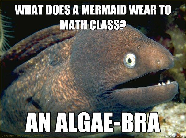 What does a mermaid wear to math class? An algae-bra  Bad Joke Eel