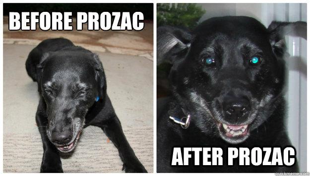 BEfore prozac  after prozac