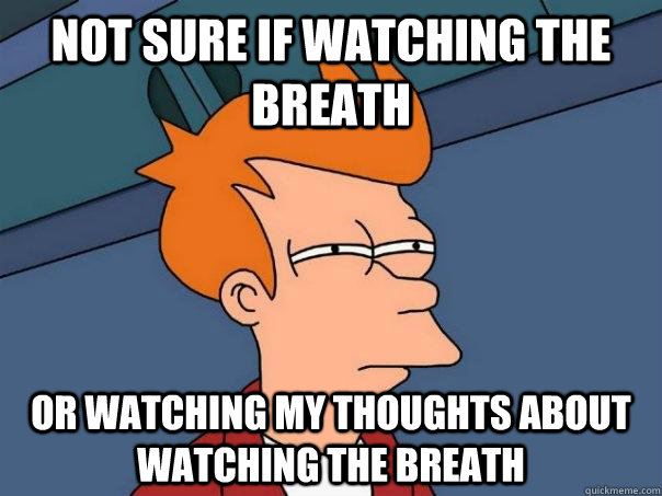 Not sure if watching the breath Or watching my thoughts about watching the breath - Not sure if watching the breath Or watching my thoughts about watching the breath  Futurama Fry