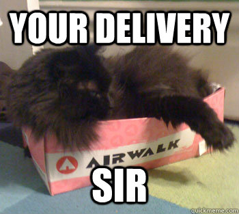 Your delivery Sir