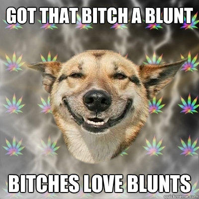 Got that bitch a blunt Bitches love blunts - Got that bitch a blunt Bitches love blunts  Stoner Dog