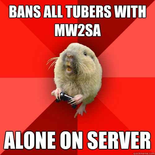 Bans all tubers with mw2sa Alone on server  Gaming Gopher