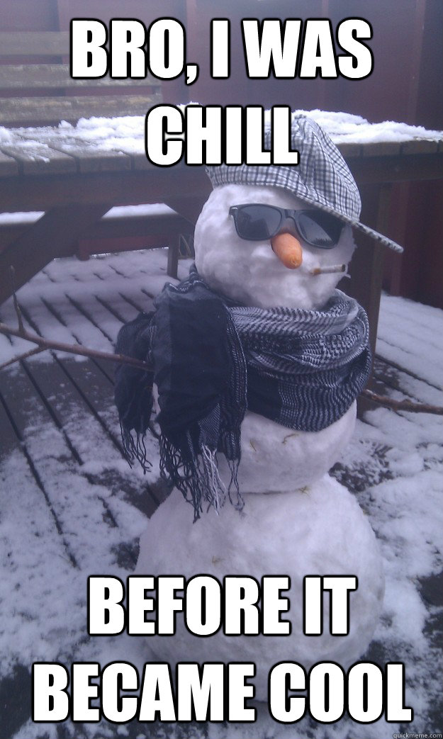 Bro, I was chill before it became cool  bob the hipster snowman